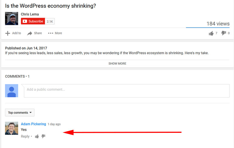 adam pickering comment on chris lema youtube video about wordpress economy shrinking